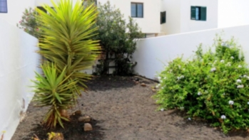 Exclusive to Lanzarote Investments. Lovely townhouse located in the lighthouse area for sale in Playa Blanca.